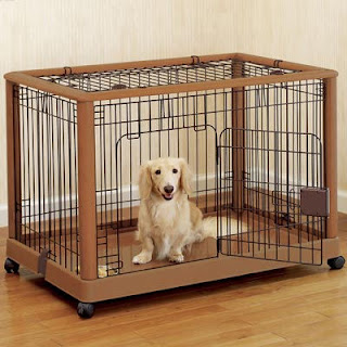 Just Another Dog Crate Training