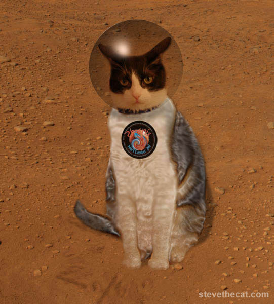 Image Gallery mars cat