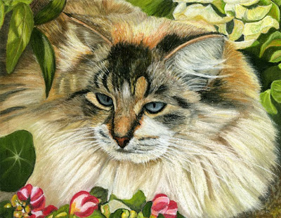 Cat, Domestic Longhair, Pet, Animal, Pastel Painting, Flowers, Garden, Shrubs, Pet Portait, For Sale