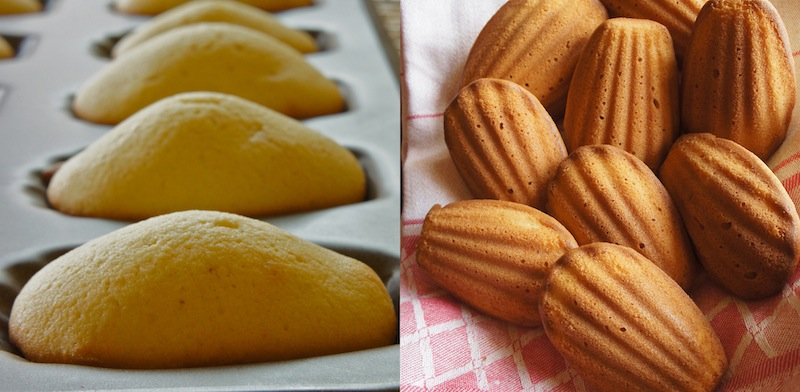 Thyme: Les Madeleines and all things classic