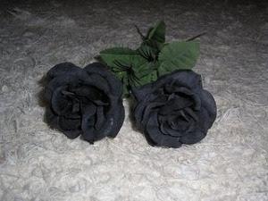 misteri foto bunga mawar hitam