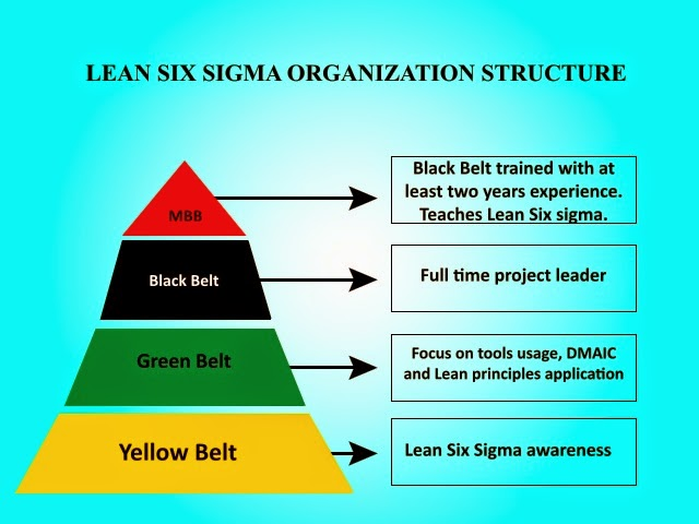 Lean Sigma Six structure pyramid