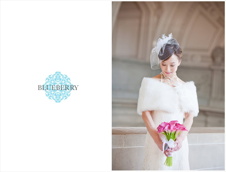San Francisco wedding city hall bride photography