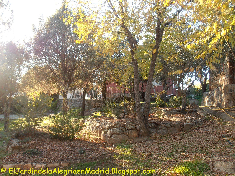 El jard n de la alegr a 11 27 15 for El jardin de la alegria cordoba