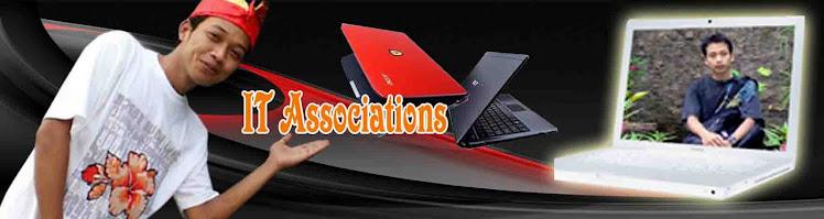 IT associations