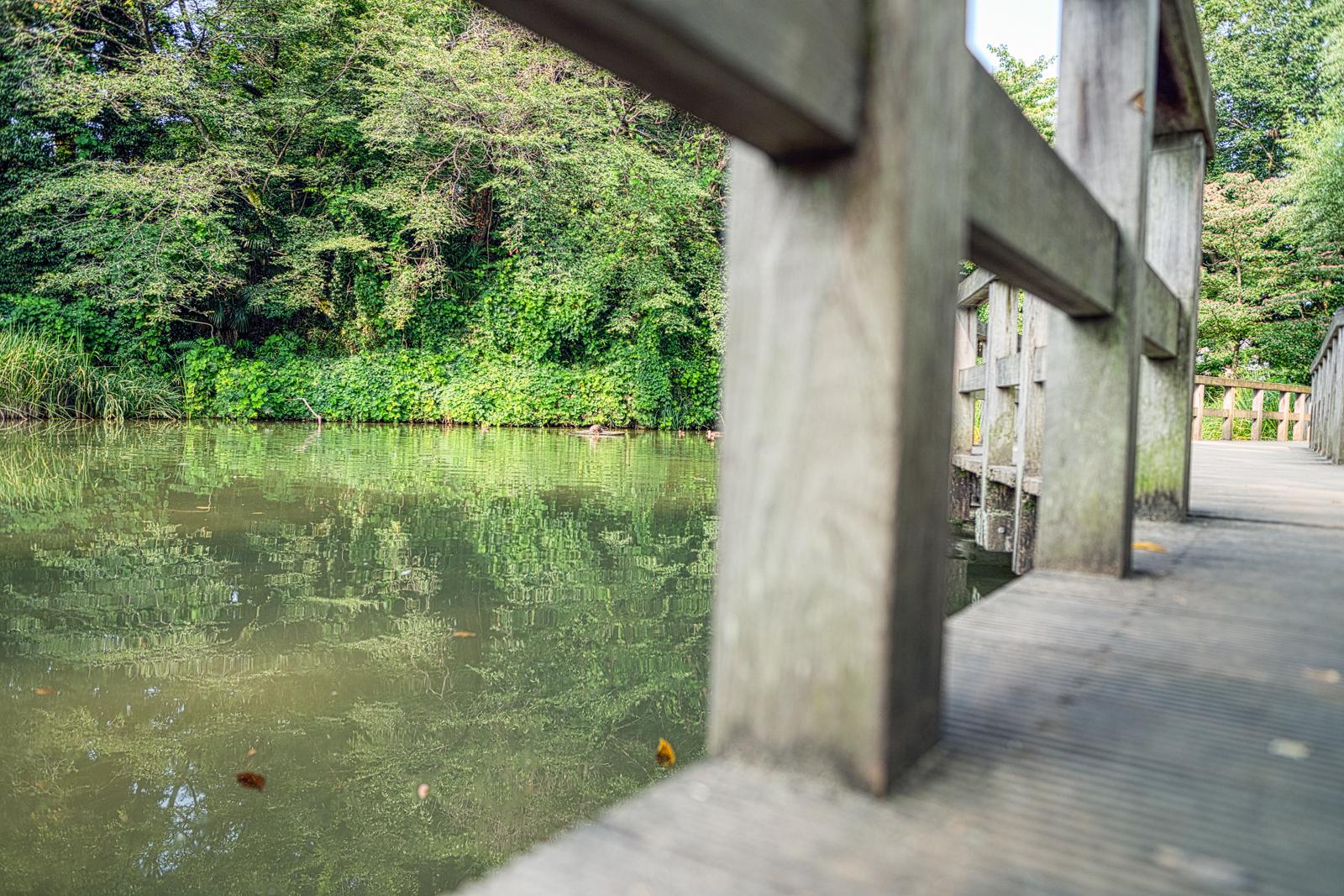 姿見の池の写真