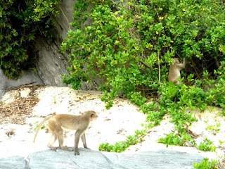Exploring Cat Ba & Lan Ha Island 2