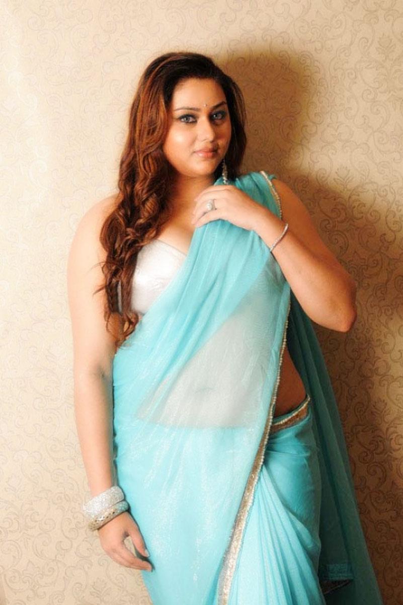 Actress Namitha Blue saree Photos