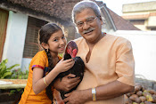 Dagudumootha Dandakor movie photos-thumbnail-13