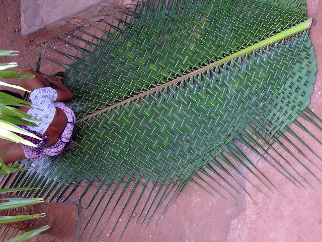 Изготовление циновки из листов кокосовой пальмы
