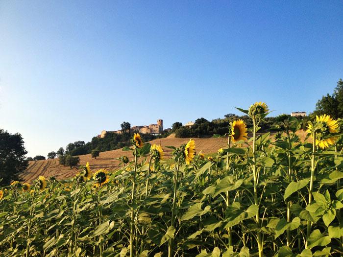 Un weekend a Monteleone di Fermo: cosa fare, cosa vedere, dove alloggiare