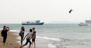 lelaki kejam,campak anjing,dalam laut
