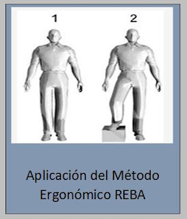 Aplicación del REBA.