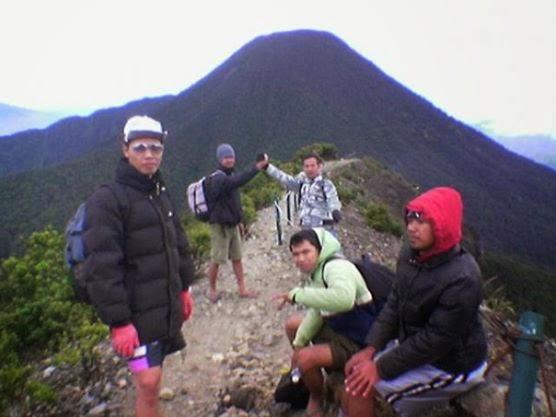Pemandu Gunung