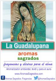 La Guadalupana. Nuestra Sra. de Guadalupe