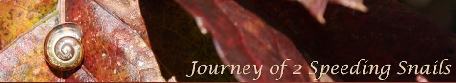 Journey of 2 Speeding Snails