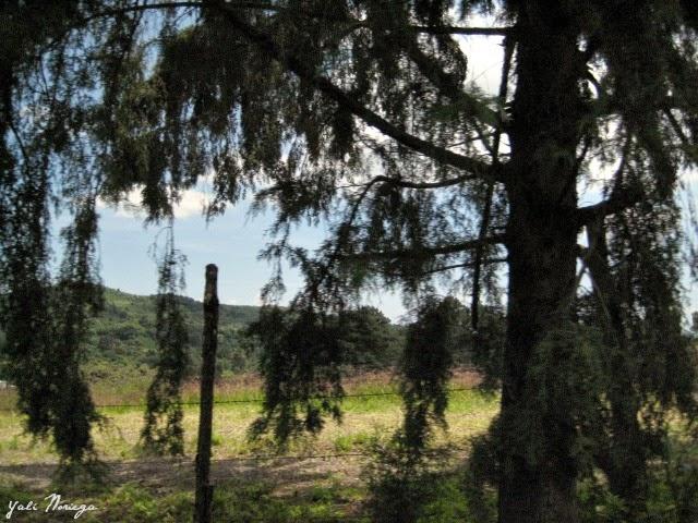 Ruta de los Conventos Tetela del Volcán Morelos México
