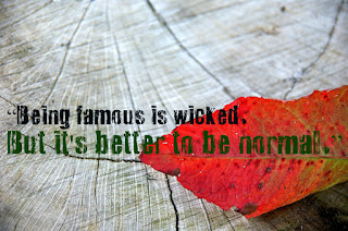 """Being famous is wicked. But it's better to be normal."""