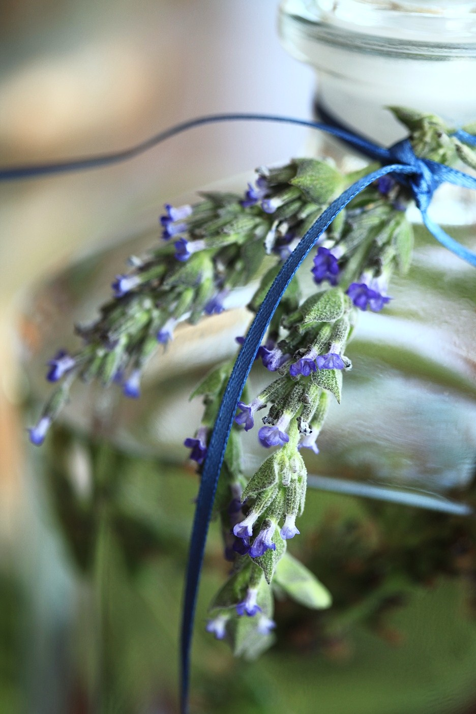How to Make Lavender Ironing Water