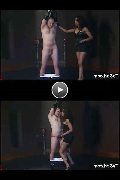 black shemale bdsm video