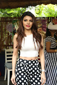 Hindi Actress Sherlyn Chopra photos-thumbnail-2