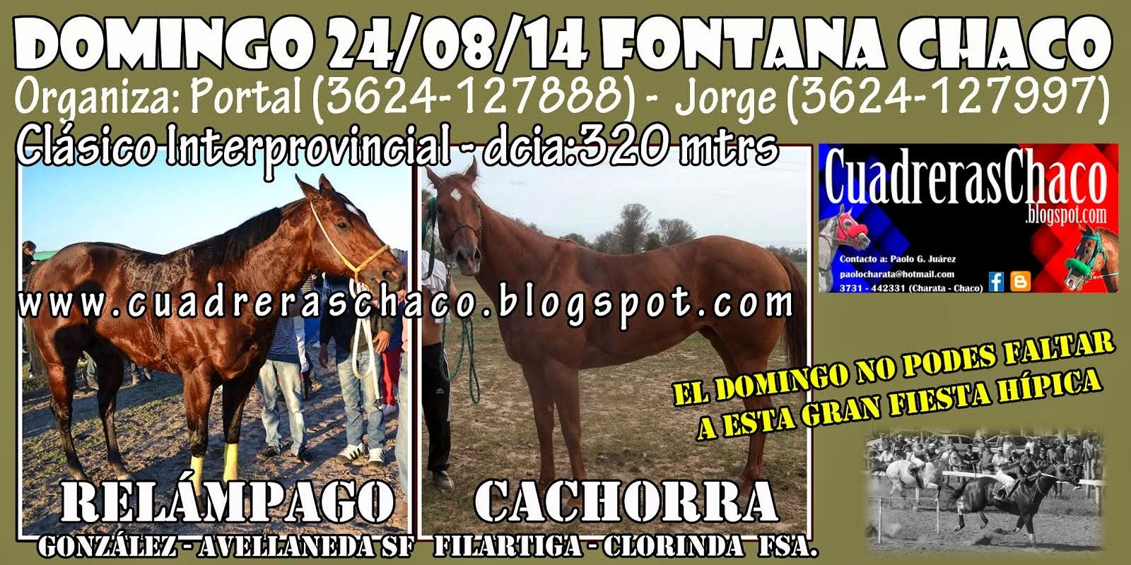 FONTANA 24-8