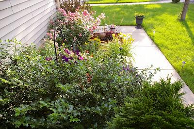Ardent Decor Garden