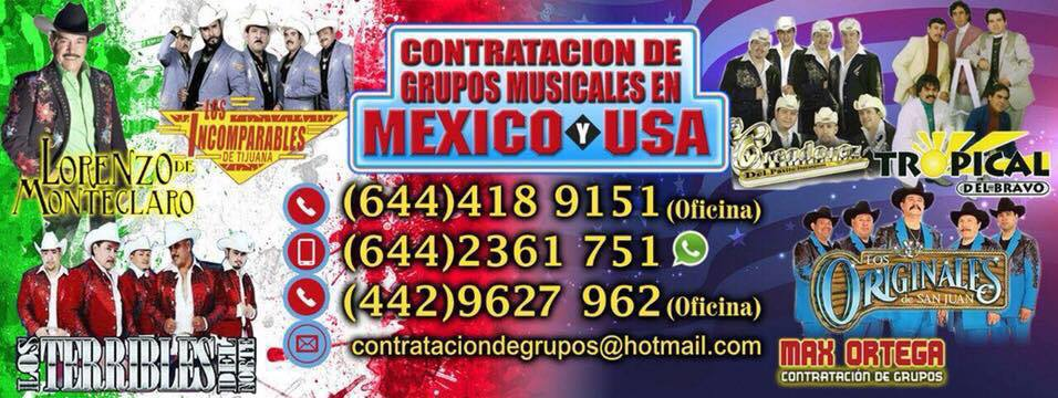 Bandas y Grupos