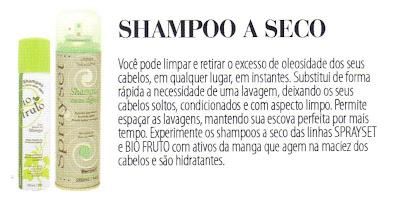 shampoo xampu lavagem a seco