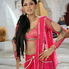 Karthika in  Dammu Movie Photo Set