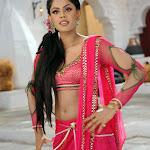 Karthika in  Dammu Movie Photo Set