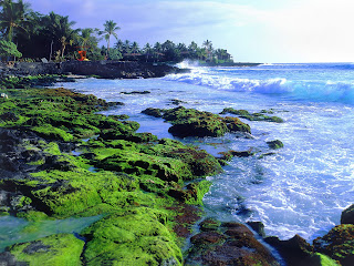 Hawaii island – also called the Big Islands - United States of America