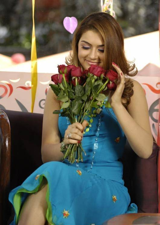 Hansika Motwani In Blue