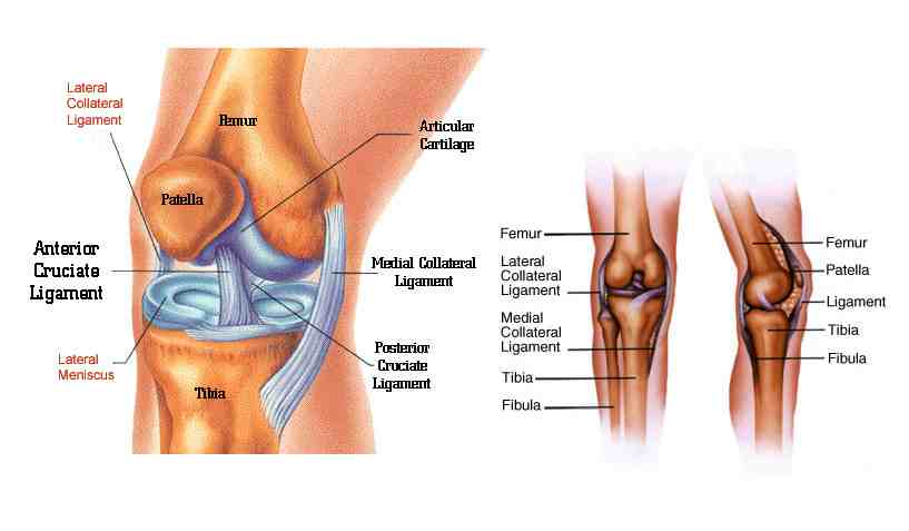 Big toe inflammation and Intermittent thumb pain -