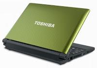 Toshiba NB505-1007N