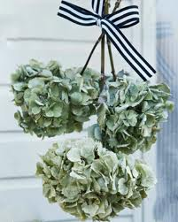 Dialhogar con arantxa secar hortensias - Como secar hortensias ...