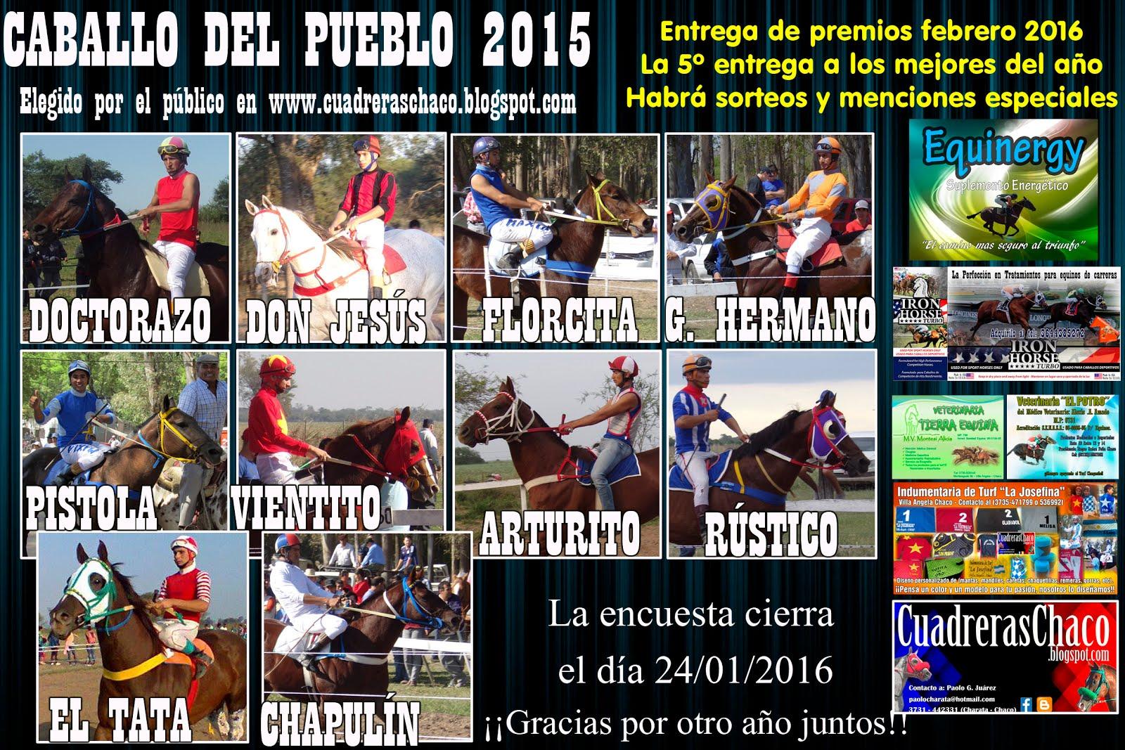 CABALLO DEL PUEBLO 2015 5-1-16