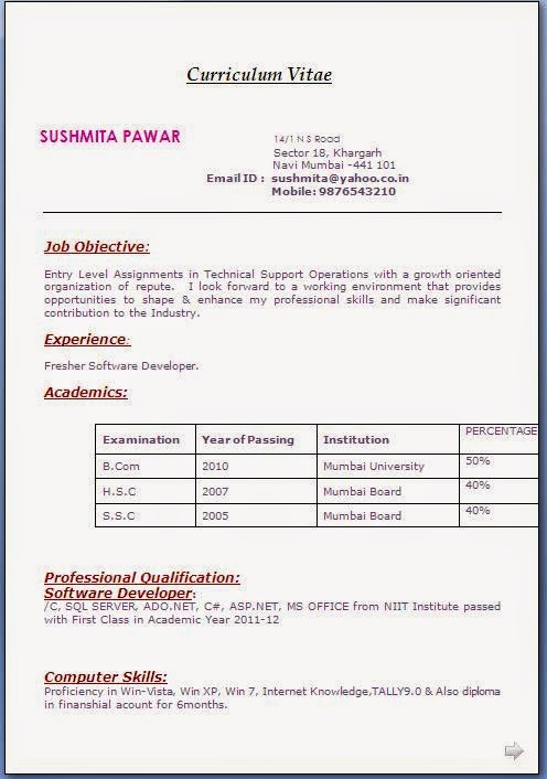 Resume Format Pdf Free Download     BNSC Dayjob