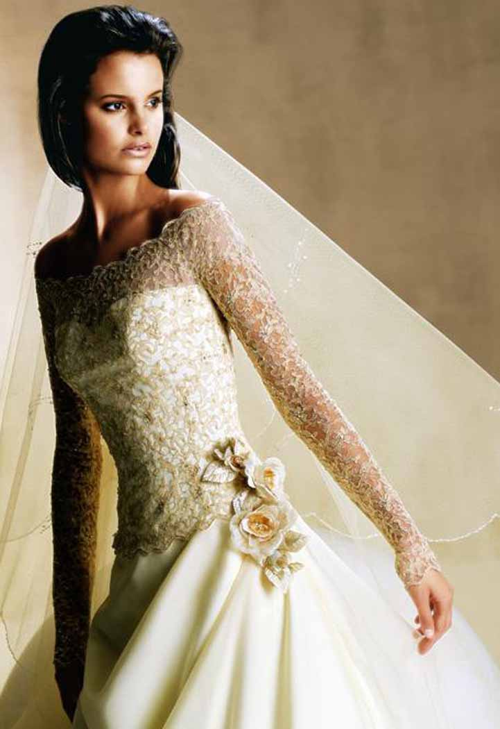 Wedding dresses with sleeves and lace for Long wedding dresses with sleeves