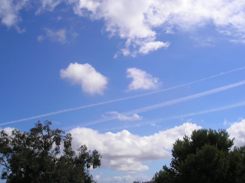 21 DE OCTUBRE DE 2012 todo el dia fumigando P1010135