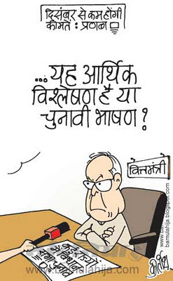mahangai cartoon, price hike, inflation cartoon, pranab mukherjee cartoon, election 2014 cartoons, assembly elections 2012 cartoons