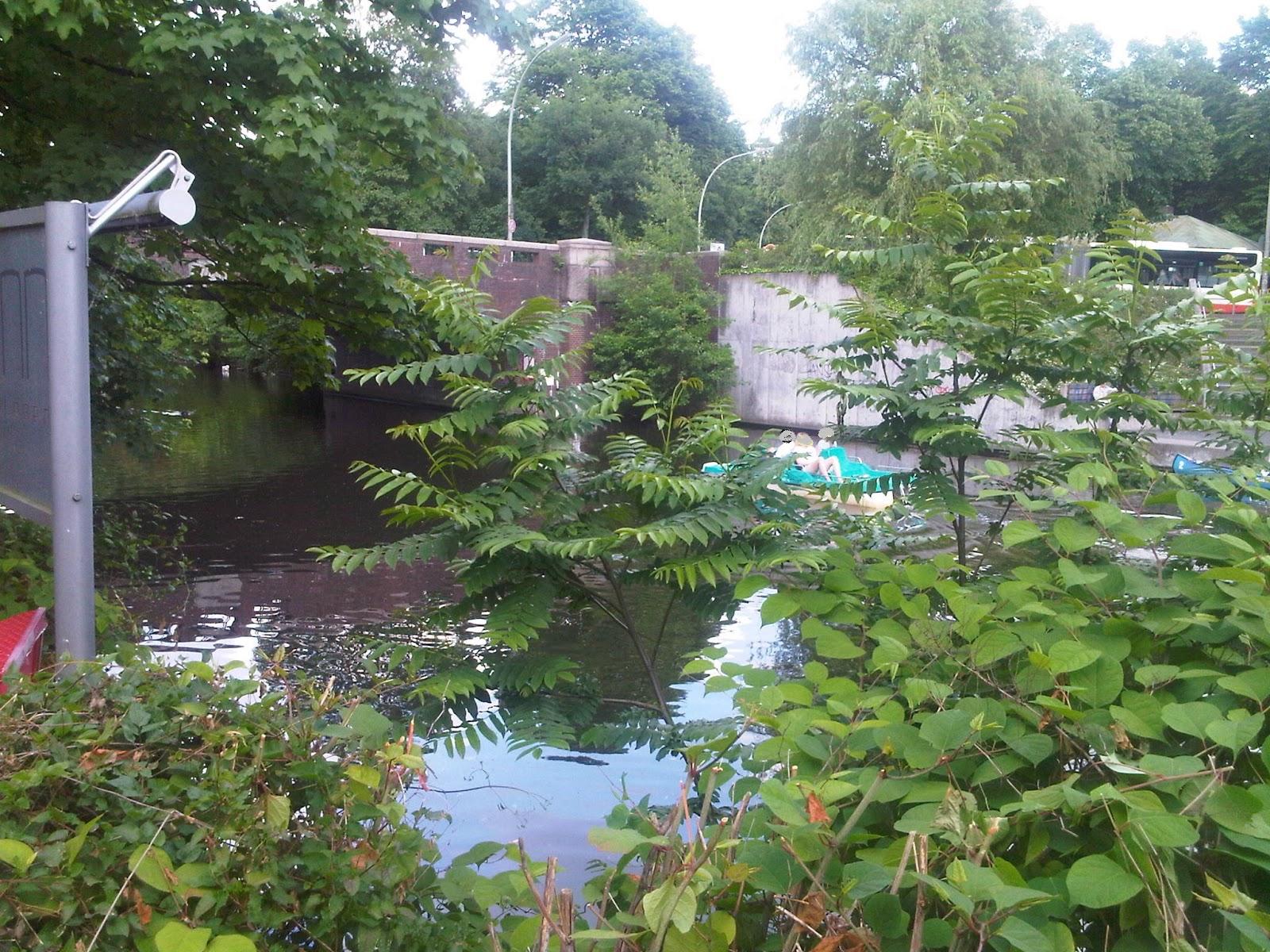 Goldbeckkanal mit Brücke des Moorfuhrtweg und Tretbotfahrer. Wasser, Büsche, Brücke, Tretboot, Lampe am Zaun.