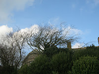 Blue Skies - St Ives Cornwall - December 2012