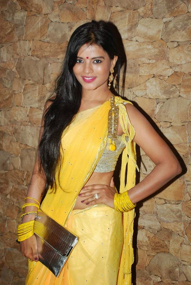 Celebs at Zee TV's 'Service Wali Bahu' Show Launch Party
