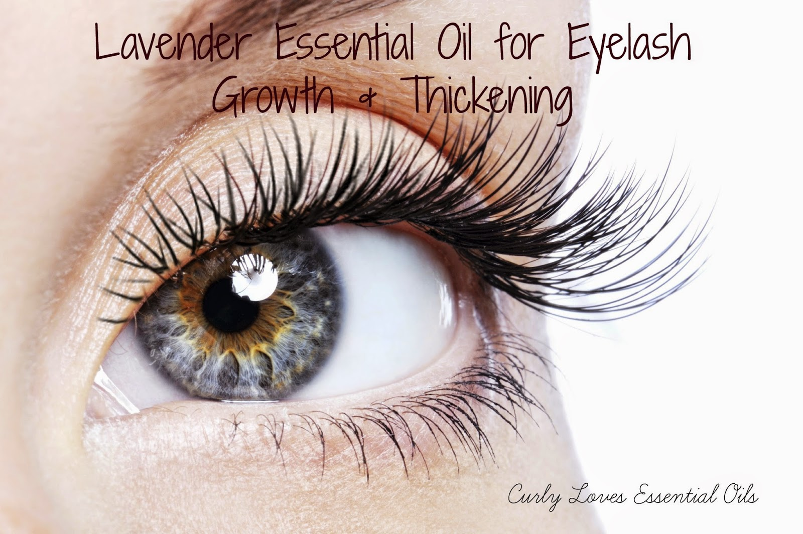 Curly Loves Essential Oils: Lavender Essential Oil for ...
