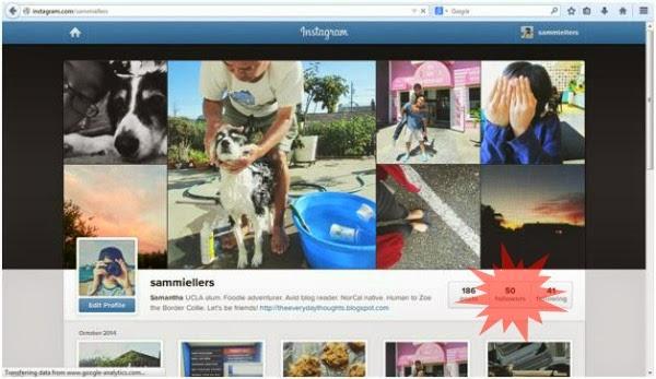Instagram Profile // sammiellers