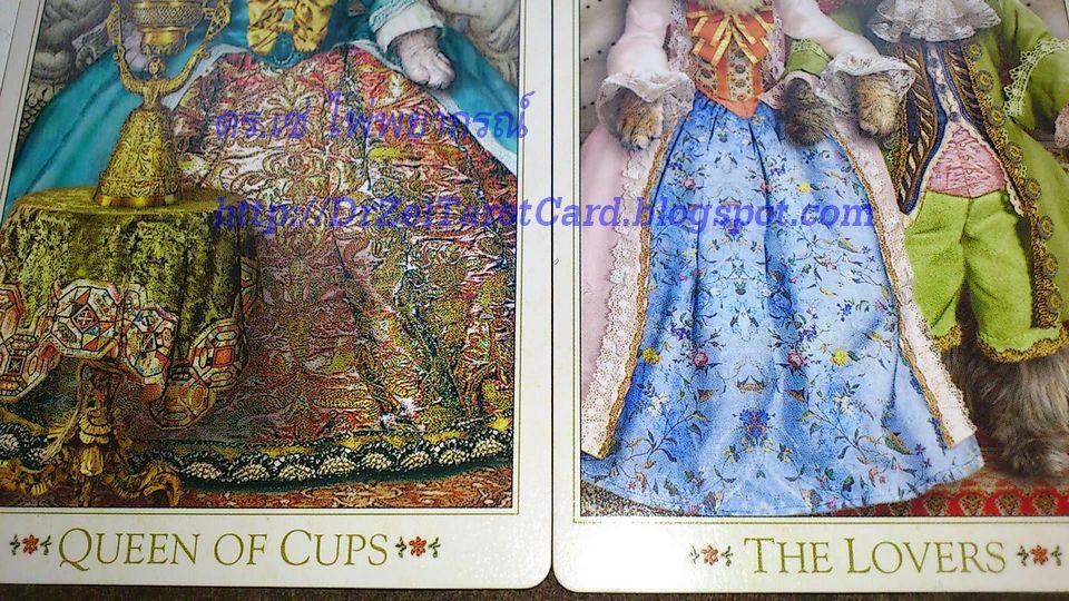 Baroque Bohemian Cat Tarot Queen of Cups Lovers ไพ่คู่รัก ไพ่ยิปซีทำนายรัก ราชินีถ้วย ดูดวง ทำนาย ไพ่ความรัก zoom close up details review ไพ่ทาโร่ แมว ไพ่ทาโรต์ ไพ่ยิปซี ไพ่ยิบซี โบฮีเมียน แคทส์ ทาโรต์ บาร๊อค บาร๊อก บาร็อค โบฮีเมี่ยน