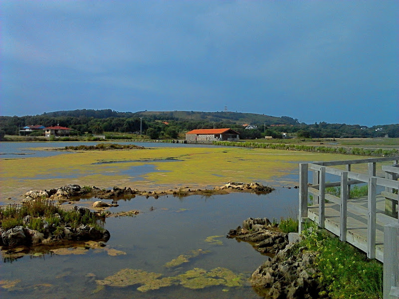 Molino de mareas de Santa Olaja en Arnuero