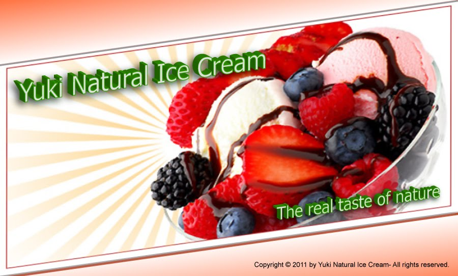 Natural Ice Logo Yuki Natural Ice Cream