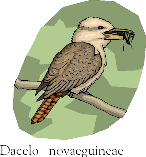 The Laughing Kookaburra Free Bird Clipart